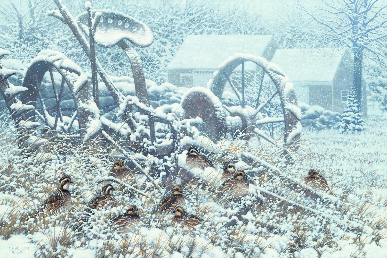 Blizzard Marthas Vineyard
