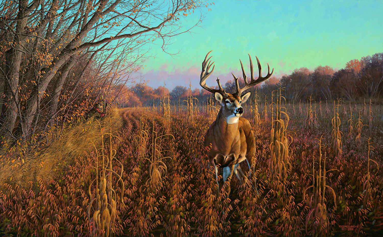 Whitetail Art Chisholm Valley Wildlife Deer –